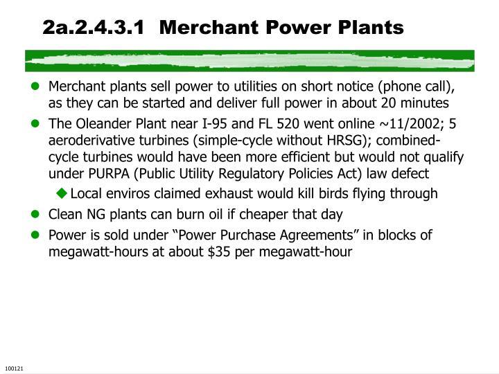 2a.2.4.3.1  Merchant Power Plants