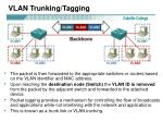 vlan trunking tagging1