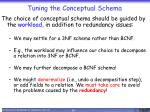 tuning the conceptual schema