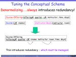tuning the conceptual schema3