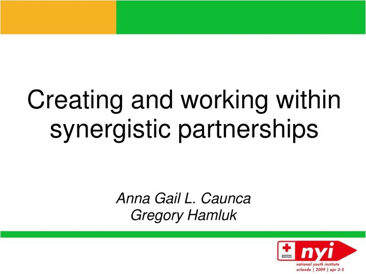 creating and working within synergistic partnerships n.