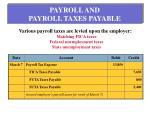 payroll and payroll taxes payable1