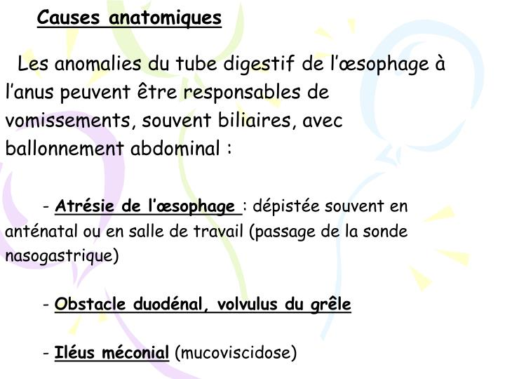Causes anatomiques