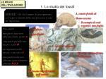 1 lo studio dei fossili