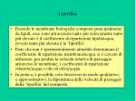 lipofilia
