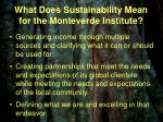 what does sustainability mean for the monteverde institute