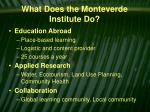 what does the monteverde institute do