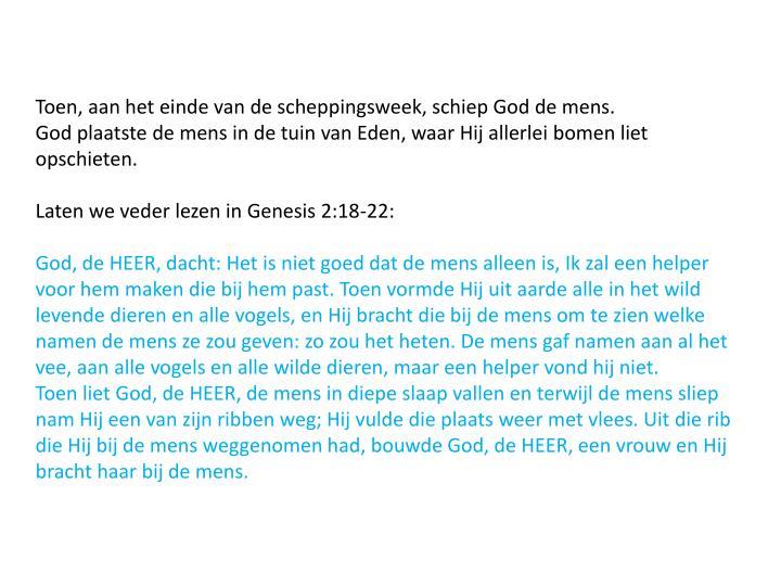 Toen, aan het einde van de scheppingsweek, schiep God de mens.