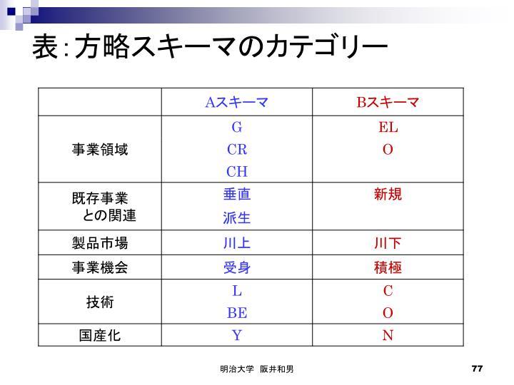 表:方略スキーマのカテゴリー