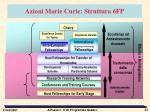azioni marie curie struttura 6fp