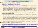 cooperation environment1