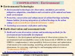 cooperation environment2