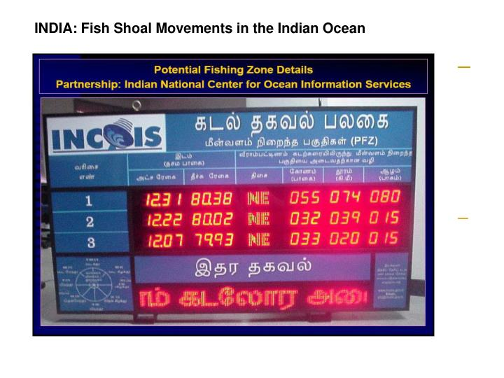 INDIA: Fish Shoal Movements in the Indian Ocean