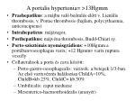a portalis hypertonia 13hgmm