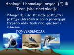 analogni i homologni organi 2 ili teorijska morfologija