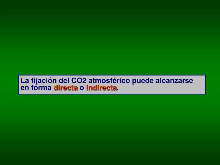 La fijación del CO2 atmosférico puede alcanzarse en forma
