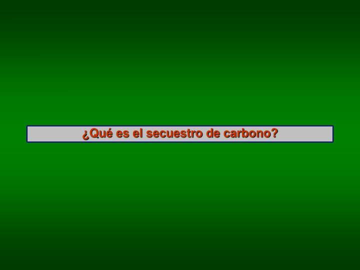 ¿Qué es el secuestro de carbono?