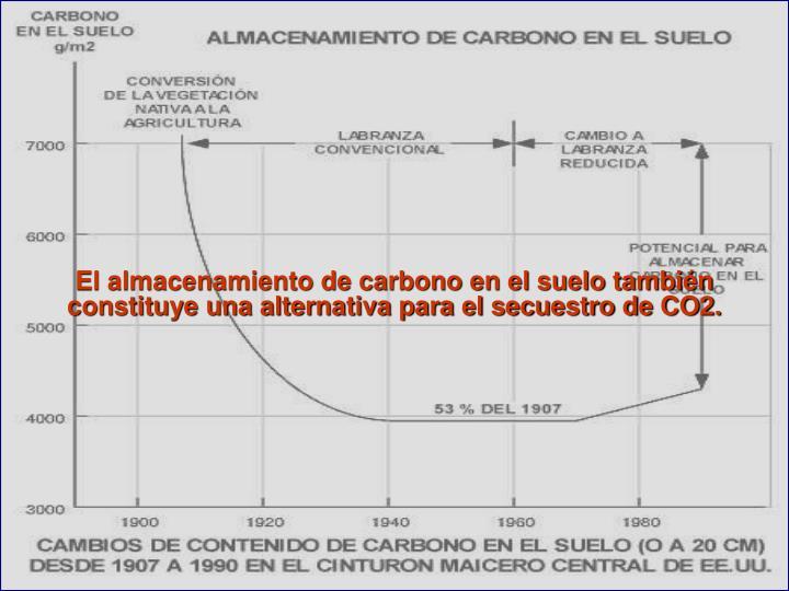El almacenamiento de carbono en el suelo también constituye una alternativa para el secuestro de CO2.