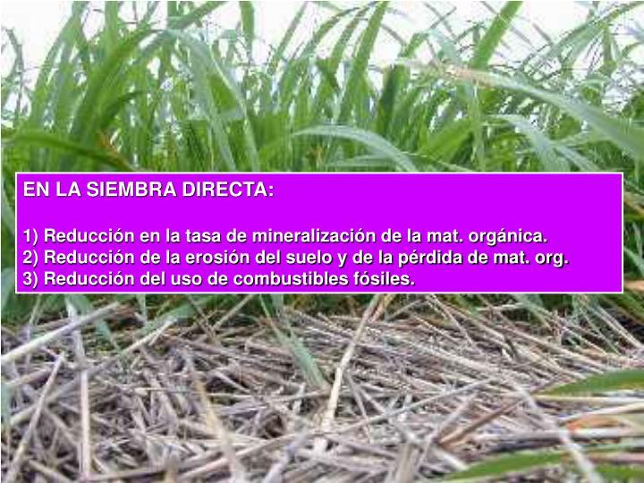 EN LA SIEMBRA DIRECTA: