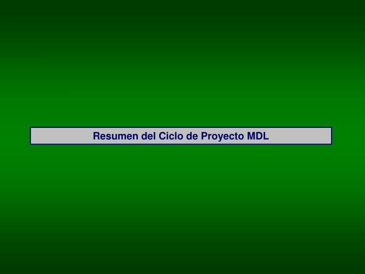 Resumen del Ciclo de Proyecto MDL