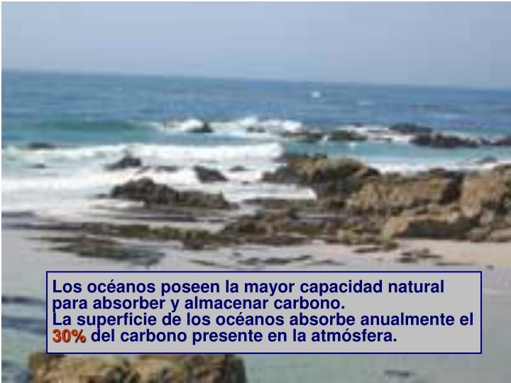Los océanos poseen la mayor capacidad natural para absorber y almacenar carbono.