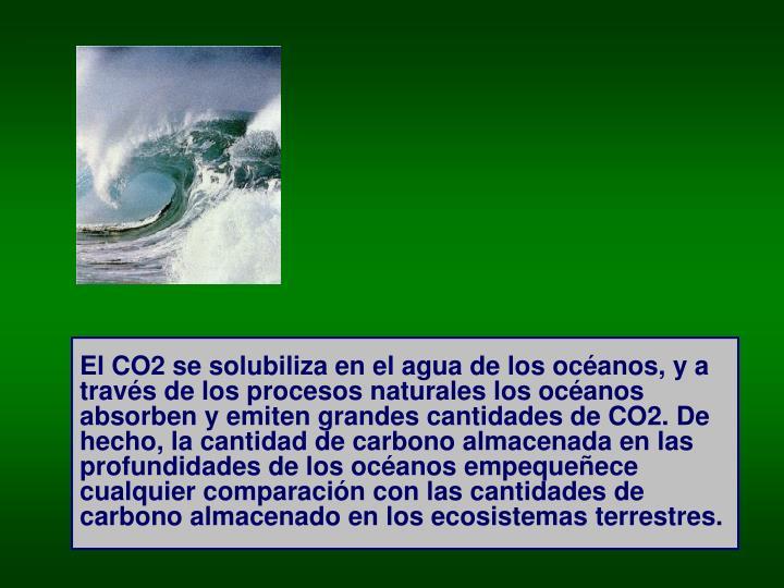 El CO2 se solubiliza en el agua de los océanos, y a través de los procesos naturales los océanos absorben y emiten grandes cantidades de CO2. De hecho, la cantidad de carbono almacenada en las profundidades de los océanos empequeñece cualquier comparación con las cantidades de carbono almacenado en los ecosistemas terrestres.