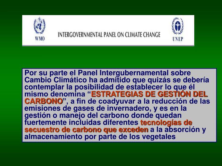 """Por su parte el Panel Intergubernamental sobre Cambio Climático ha admitido que quizás se debería contemplar la posibilidad de establecer lo que él mismo denomina """""""
