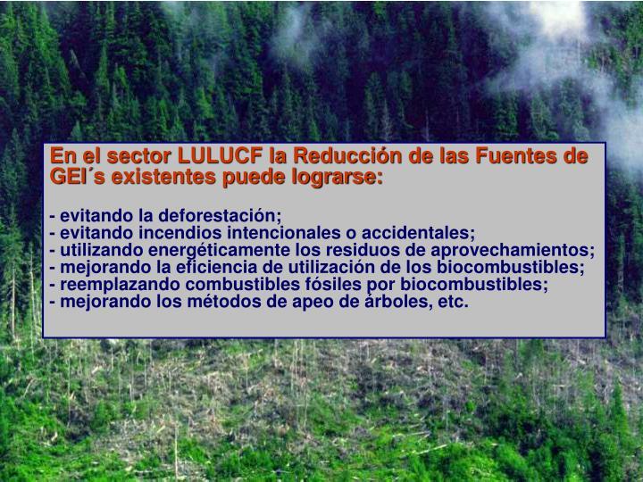 En el sector LULUCF la Reducción de las Fuentes de GEI´s existentes puede lograrse: