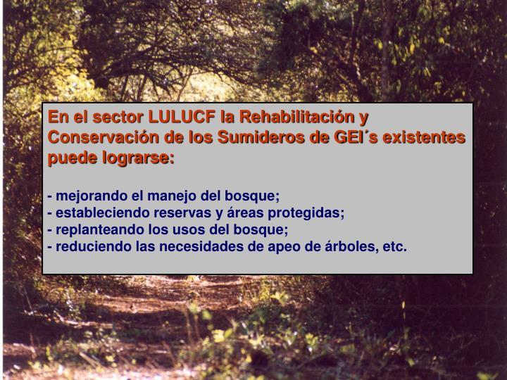 En el sector LULUCF la Rehabilitación y Conservación de los Sumideros de GEI´s existentes puede lograrse: