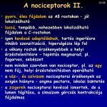 a nociceptorok ii