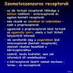 szomatoszenzoros receptorok