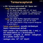 termoreceptorok