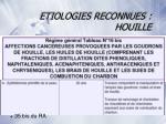 etiologies reconnues houille2