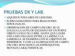 pruebas dx y lab