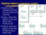 hybrid object common cases