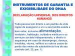 instrumentos de garantia e exigibilidade do dhaa