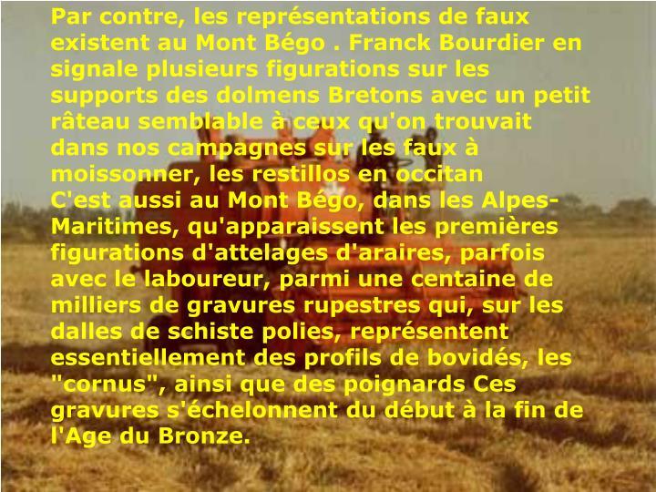 Par contre, les représentations de faux existent au Mont Bégo . Franck Bourdier en signale plusieurs figurations sur les supports des dolmens Bretons avec