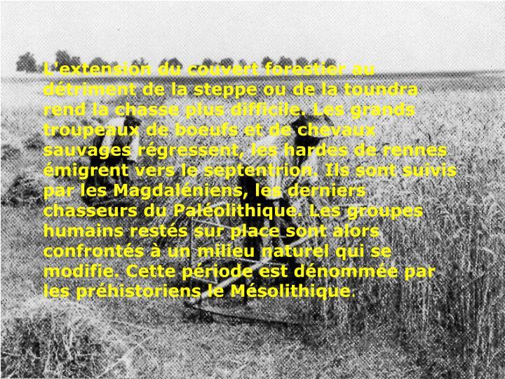 L'extension du couvert forestier au détriment de la steppe ou de la toundra rend la chasse plus difficile. Les grands troupeaux de boeufs et de chevaux sauvages régressent, les hardes de rennes émigrent vers le septentrion. Ils sont suivis par les Magdaléniens, les derniers chasseurs du Paléolithique. Les groupes humains restés sur place sont alors confrontés à un milieu naturel qui se modifie. Cette période est dénommée par les préhistoriens le Mésolithique