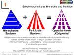extreme auswirkung hierarchie und funktion