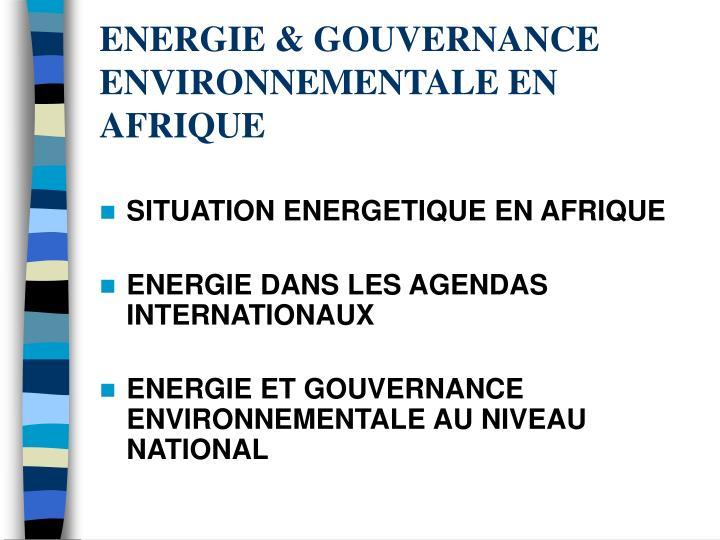 Energie gouvernance environnementale en afrique