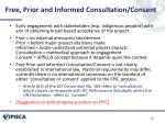 free prior and informed consultation consent
