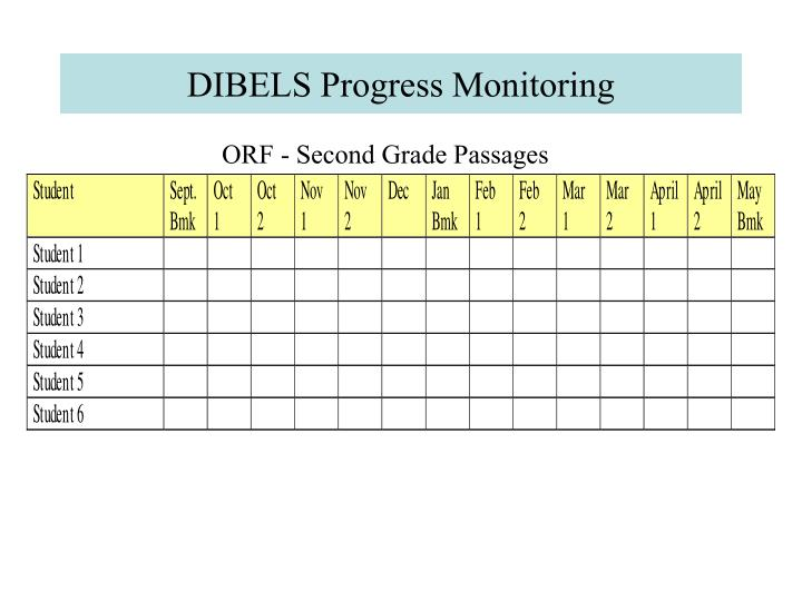 DIBELS Progress Monitoring