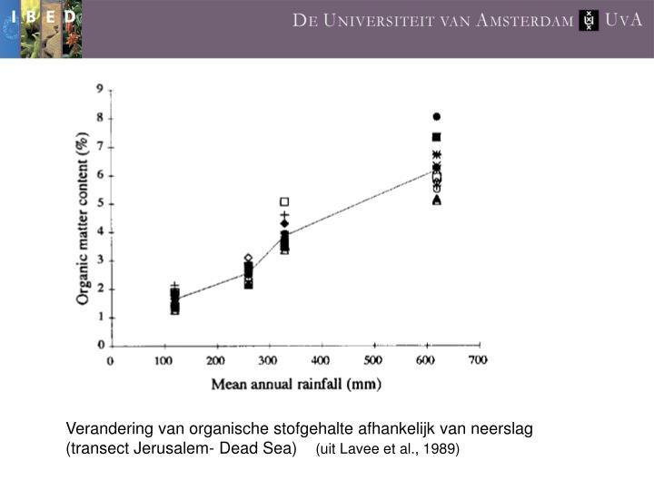 Verandering van organische stofgehalte afhankelijk van neerslag  (transect Jerusalem- Dead Sea)