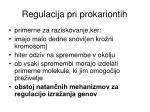 regulacija pri prokariontih