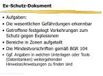 ex schutz dokument