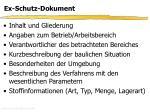ex schutz dokument1