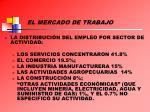 el mercado de trabajo1