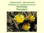 mitteparasiidid mitmeaastased r ndlikud ehk vegetatiivselt levivad risoomidega paiseleht