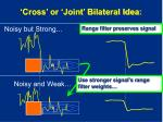 cross or joint bilateral idea