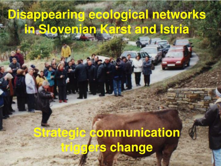 Disappearing ecological networks